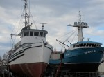 Many boats docked here. Port Townsend is known as a Maritime Center for Independent Boat Builders.