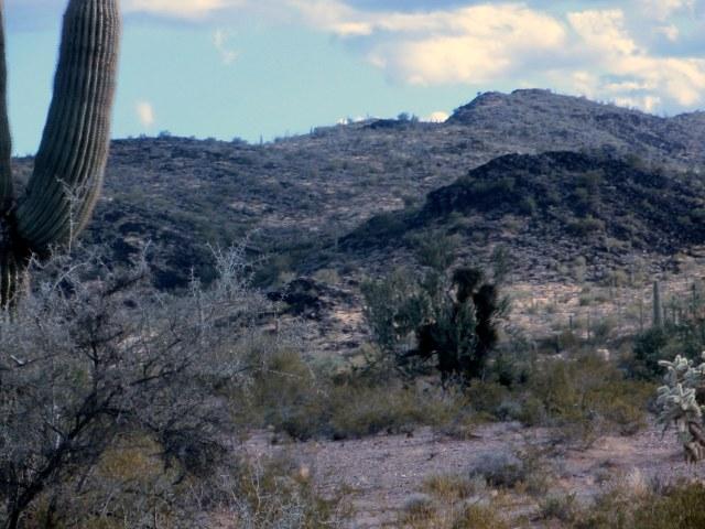 Senoran Desert National Monument